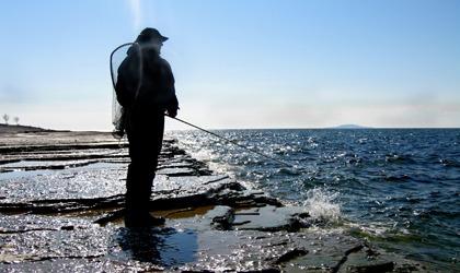 dnf-fiskevatten