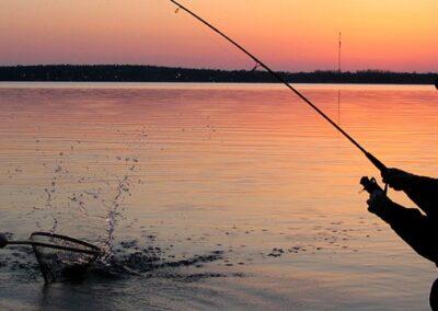 topp-foto-naturligt-fiske